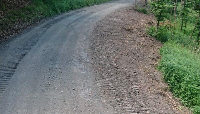 Waldweg mit Planierraupe sauber geschoben